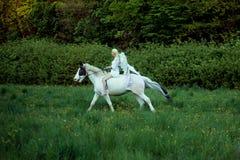 Ange gracieux sur le cheval majestueux Images libres de droits