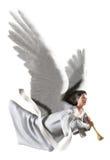 Ange sur le blanc illustration de vecteur