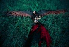 Ange tombé par noir Photos libres de droits