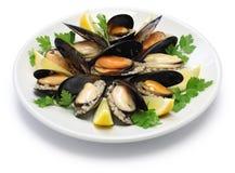 Angefüllte Miesmuscheln, türkisches Lebensmittel Stockfotos