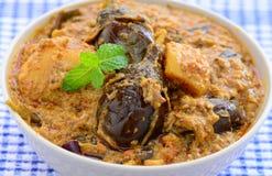 Angefüllter Auberginen-Curry Lizenzfreie Stockfotos