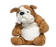 Angefülltes englisches Bulldoggenspielzeug lizenzfreies stockbild