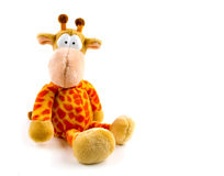Angefüllte Giraffe getrennt auf weißem Hintergrund Lizenzfreie Stockbilder