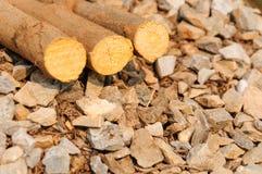 Angehäufte Baumstämme auf Felsenhintergrund lizenzfreie stockfotos