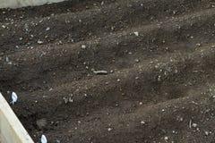 Angehobener Betgarten mit Reihen Lizenzfreies Stockfoto