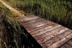 Angehobener hölzerner Plankenweg trifft Steinpflasterungsweg im salzigen Sumpf nahe Nin, Kroatien Stockbild