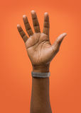 Angehobener weibliche Handtragender Ring Stockfotos