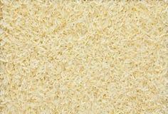 Angekochter Reis Lizenzfreies Stockbild