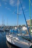 Angekoppelte Boote in Florida-Jachthafen Lizenzfreies Stockbild