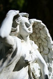Angel. A statue of an angel basks in the morning sun Royalty Free Stock Photography