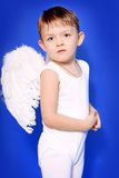 Angel Royalty Free Stock Image