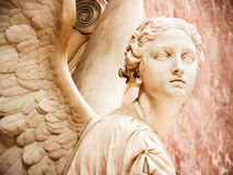 Angel Stock Image