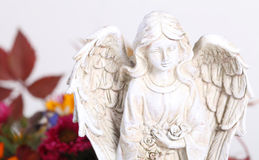Angel before autumn leaves. On white background royalty free stock images