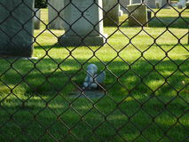 Angel Awaiting. Angel tombstone behind a chain link fence in Newport, Rhode Island Royalty Free Stock Image