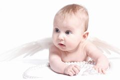 Angel baby. With white pearls Stock Photos