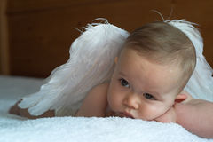 Angel Baby Stock Photo