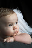 Angel Baby royalty free stock photos