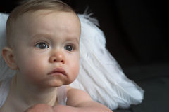 Angel Baby Stock Image