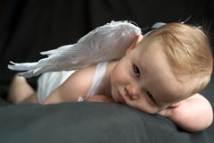 Angel Baby. Image of baby wearing angel wings Stock Photography