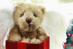 Angel Bear Stock Image