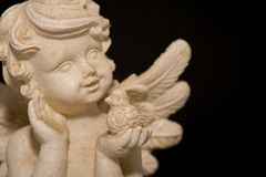Angel with bird. Angel with a bird and a black background Royalty Free Stock Images