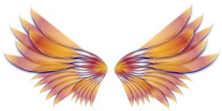 Angel Bird or Fairy Wings Gold. A clip art illustration of isolated fairy, angel or bird wings in gold and purple pink colors Royalty Free Stock Image