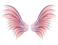 Angel Bird or Fairy Wings Pink Stock Images