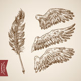 Angel bird wings feather template engraving retro vintage vector stock illustration