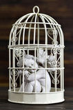 Angel in a birdcage. On dark background Royalty Free Stock Photo