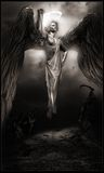 angel black colors contrast dark yellow Στοκ φωτογραφίες με δικαίωμα ελεύθερης χρήσης