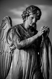 Angel black and white image Stock Images