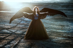 Angel with black wings Stock Photography