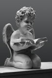 Angel with the book on a grey background Stock Images