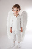 Angel boy. Beautiful little angel boy, white clothes, wings, blue eyes Stock Photos