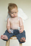 Angel Boy. Image of an adorable toddler wearing angel wings and jeans Stock Photography
