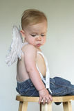 Angel Boy. Image of an adorable toddler wearing angel wings and jeans Royalty Free Stock Photo