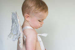 Angel Boy. Image of an adorable toddler wearing angel wings Stock Image