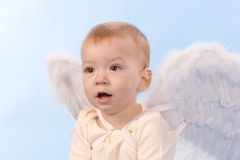 Angel boy. Surprised child with angel wings Royalty Free Stock Photos