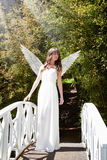 Angel on bridge Stock Images