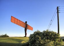 Angel Bush Post. The Angel of the North with some of its neighbours, a bush and a telegraph pole Royalty Free Stock Image