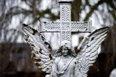 Angel on a cementery. An angel on a cementery royalty free stock photo