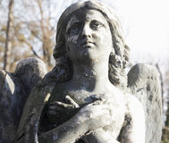 Angel (Cemetary architectures - Europe) Royalty Free Stock Photo