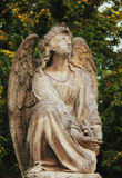 Angel (Cemetary architectures - Europe). Collection of the most beautiful architectures examples in European cemeteries Stock Images