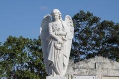 Angel on Cemetery. Angel on graveyard in Havana, Cuba Royalty Free Stock Images