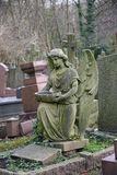 Angel in cemetery. Royalty Free Stock Photo