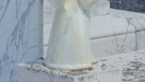Angel detail at Cavtat old cemetery stock video
