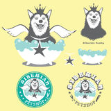Angel Dog Siberian Husky Royalty Free Stock Photo