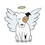 Angel dog Royalty Free Stock Image