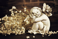 Angel and dry flowers Stock Photography