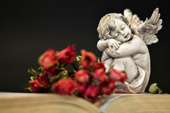 Angel and dry roses on old book Royalty Free Stock Image